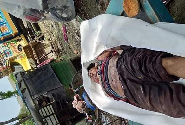 শার্শায় সড়ক দুর্ঘটনায় চটপটি বিক্রেতা নিহত